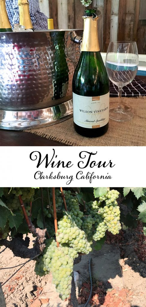 Wine Tour in Clarksburg, California